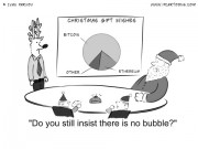 Finance Cartoon #0028 - Do you still insist there is no bubble?